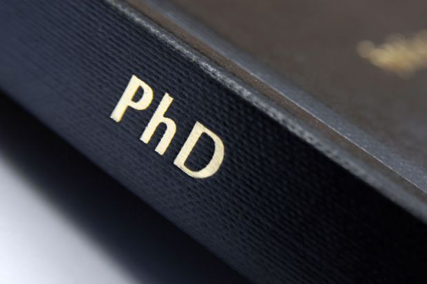 How To Write a Perfect Essay Like a PhD